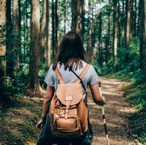 rear view of hiker walking on footpath in forest