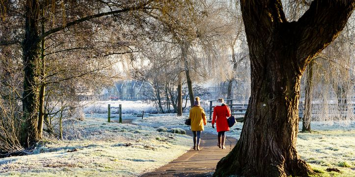 The best time of day to take a walk, according to science