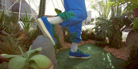 Majorelle blue, Botany, Fun, Tree, Footwear, Plant, Sunlight, Leisure, Vacation, World,