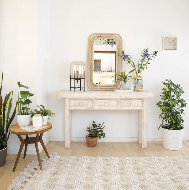 recibidor decorado en colores claros y plantas