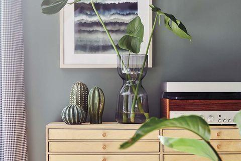 recibidor con mueble de cajones y plantas