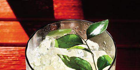 Fluid, Glass, Liquid, Drink, Alcoholic beverage, Cocktail, Distilled beverage, Classic cocktail, Drinkware, Cocktail garnish,