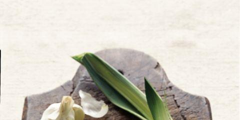 Leaf, Bowl, Ingredient, Recipe, Dishware, Meal, Mixing bowl, Leaf vegetable, Kitchen utensil, Produce,
