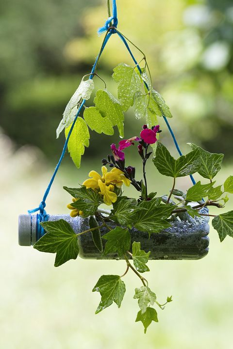 Recycing gardening crafts