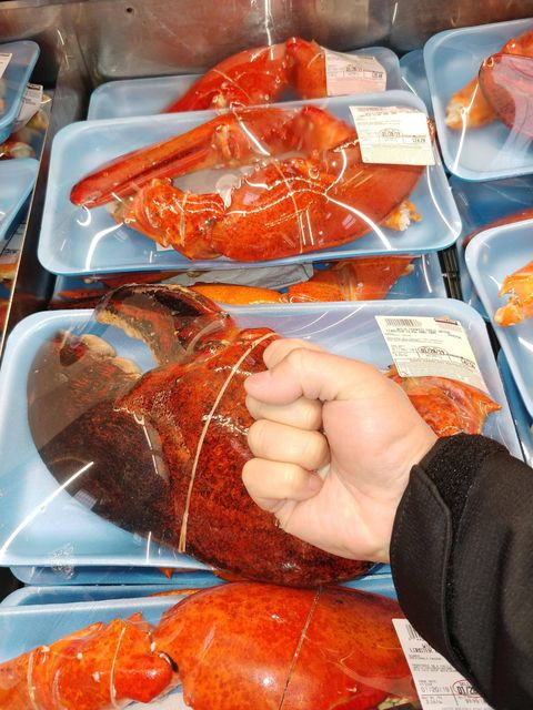 Shoppers Have Found Massive, 3-Pound Lobster Claws At Costco