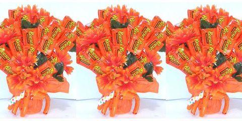 Orange, Flower, Cut flowers, Plant, Fashion accessory,