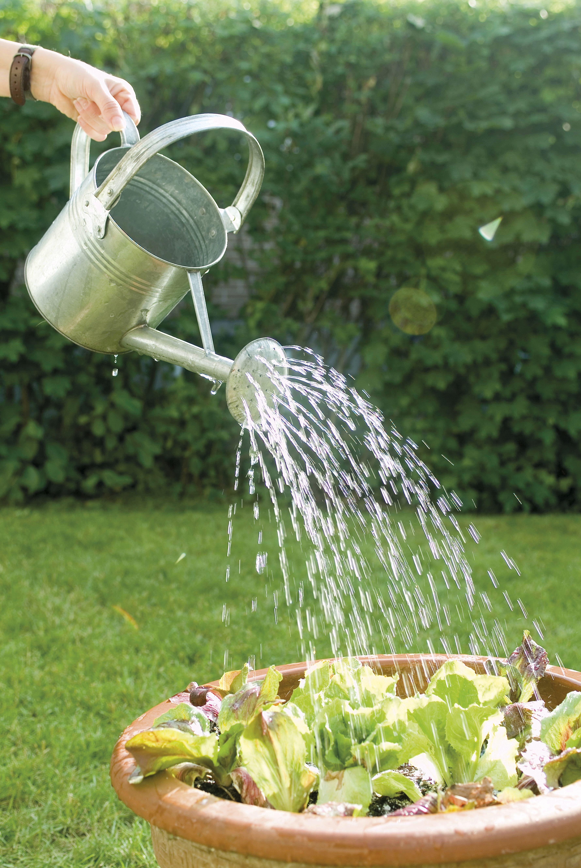 Ahorrar agua en casa y en la factura de la luz con estos sencillos trucos.