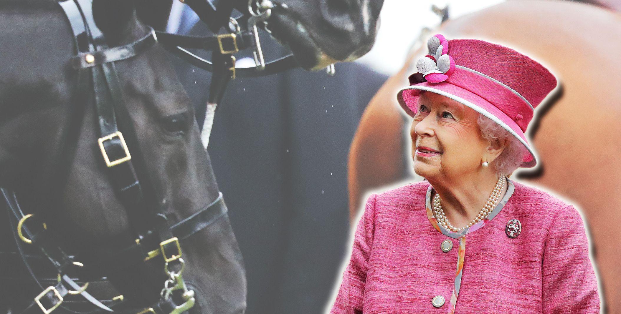 La regina Elisabetta II a 92 anni è più in forma, attiva e in salute di me e te messi insieme