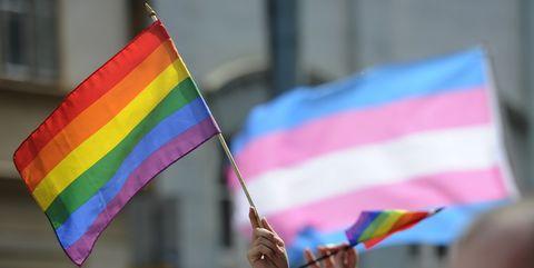 Flag, Parade, Public event, Event, Festival,