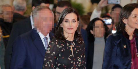 Reina Letizia, Fitur