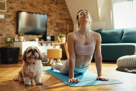relaxed woman with dog practicing yoga in cobra pose at home