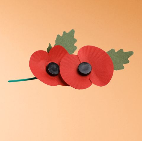 remembrance day 2020 where to buy poppies