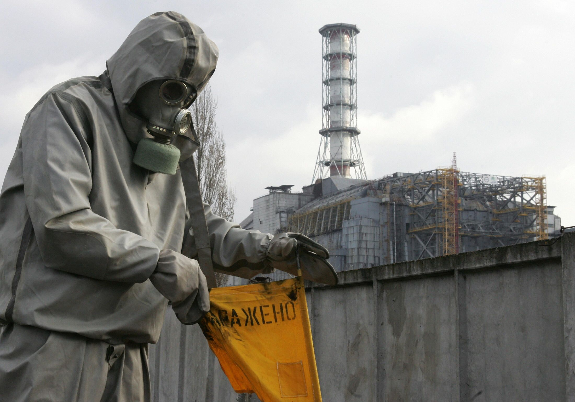 You Should Know About This Chernobyl Fungus That Eats Radiation