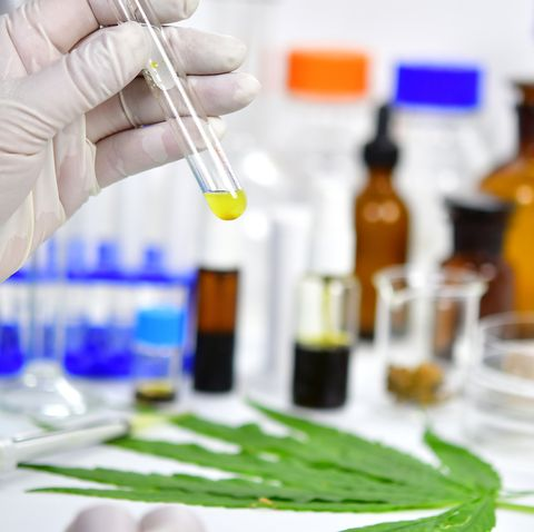 Research and Experiment of the Cannabidiol oil (CBD)