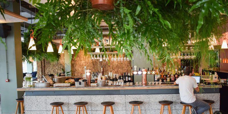 Restaurants inDen Haag, hotspots