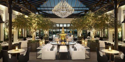 Lighting, Building, Function hall, Interior design, Restaurant, Architecture, Ceiling, Room, Furniture, Tree,