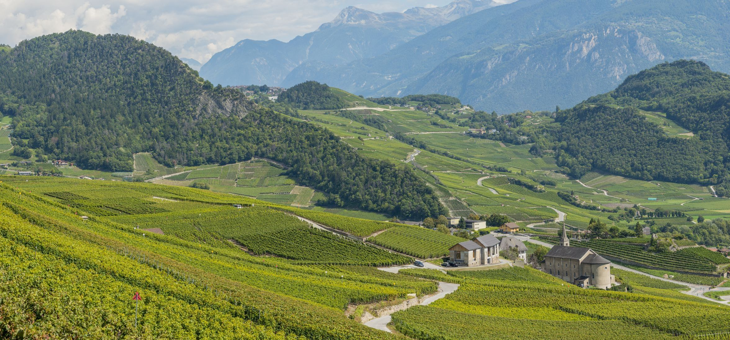 Rhone Valley, vine growing area