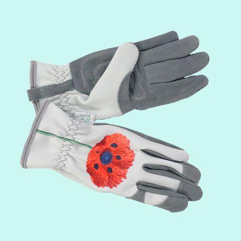 RHS Collection Malvern Superior Deerskin Leather Gardening Gloves