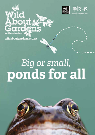 UK gardeners urged to bring back the garden pond as the best way to help wildlife