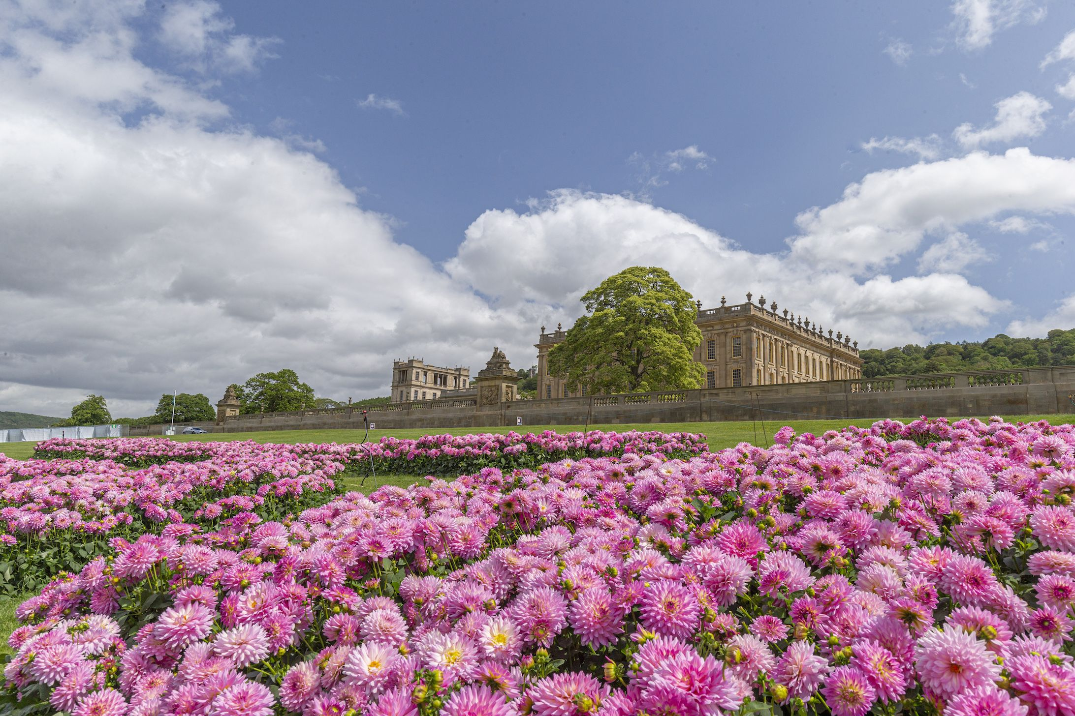 Chatsworth Flower Show 2020 Tickets Chatsworth House Location
