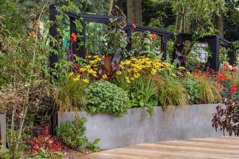 rhs chelsea flower show 2021 feature gardens