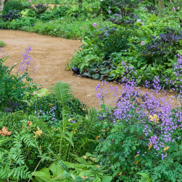 rhs queen's green canopy garden designed by david dodd feature garden rhs chelsea flower show 2021 stand no 10