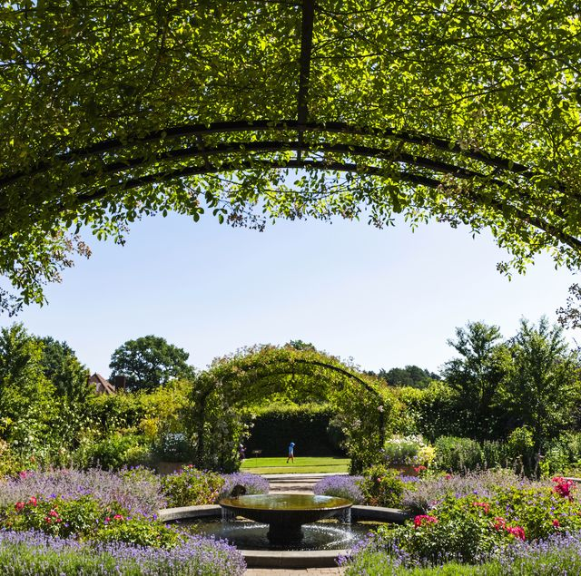 rhs wisley gardens, england, surrey, guildford, wisley, the royal horticultural society garden, flowers in bloom, 30064286 photo by dukasuniversal images group via getty images