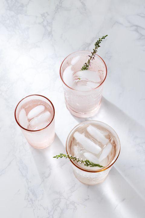 rhubarb gin rhubarb gin recipe