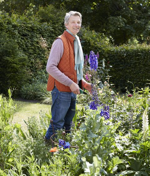 designer richard smith in his picking garden surrounded by delphinium poppies and nepeta