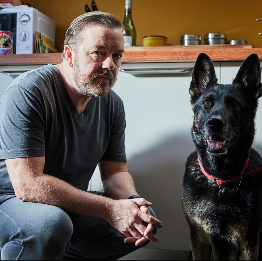 Ricky Gervais confirms he's started work on After Life series 2