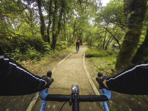Riding along the cycle path of the Tea river