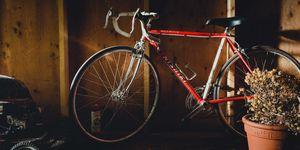 Nishiki bike