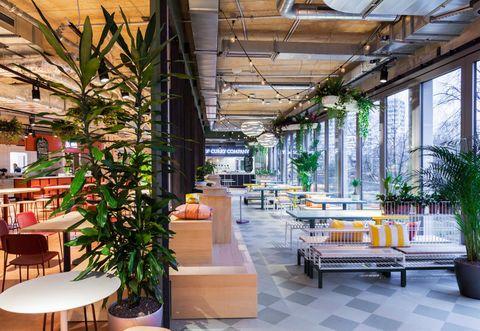 Furniture, Interior design, Table, Flowerpot, Houseplant, Outdoor furniture, Interior design, Beam, Design, Coffee table,