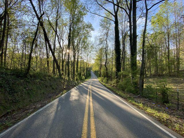 road in cumming