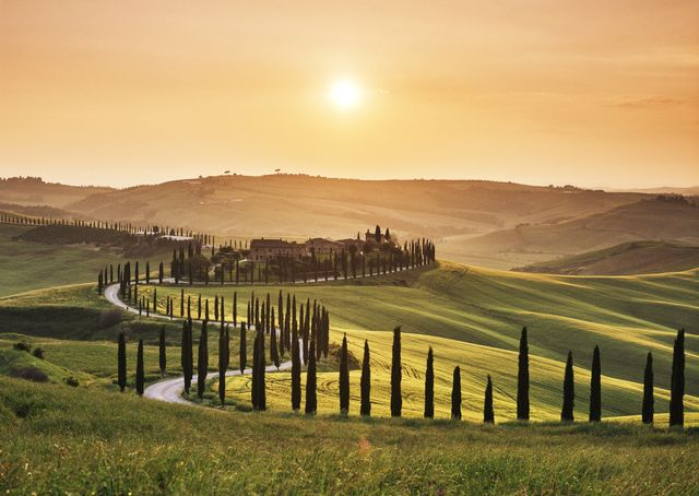 road leading through tuscan landscape at sunset