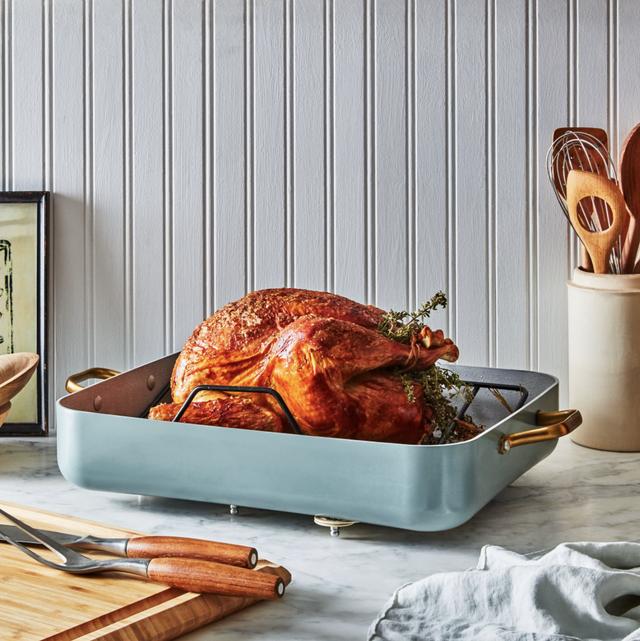 turkey in roasting pan