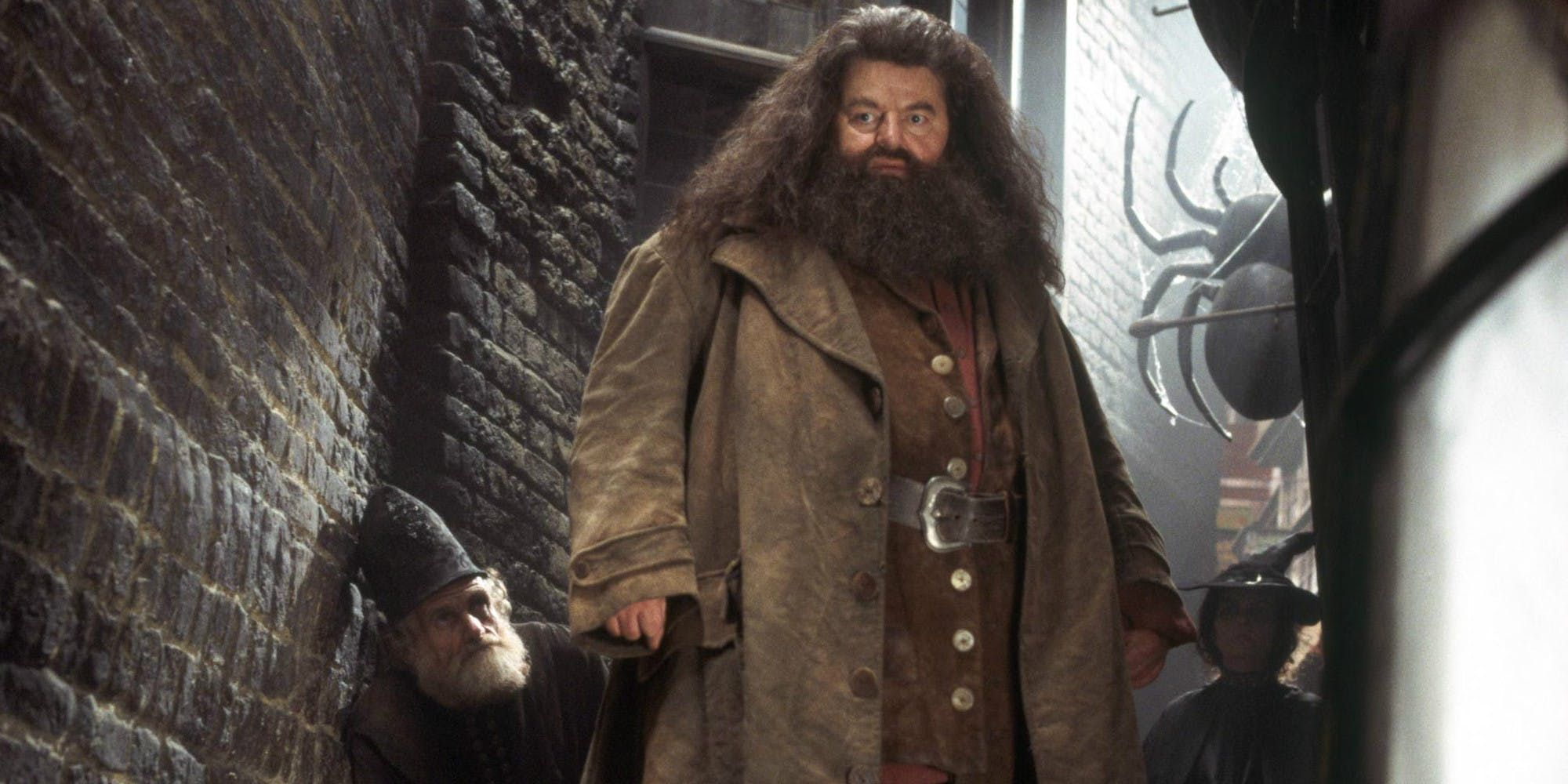 Harry Potter's Hagrid was actually a Death Eater working for Voldemort, according to a wild fan theory