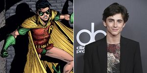 Robin The Batman Timothee Chalamet