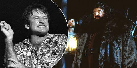 Robin Williams Hagrid