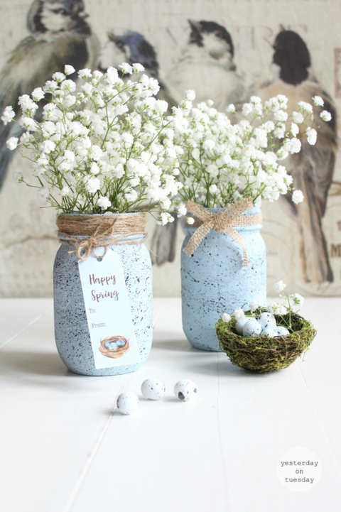 robins egg speckled spring mason jar