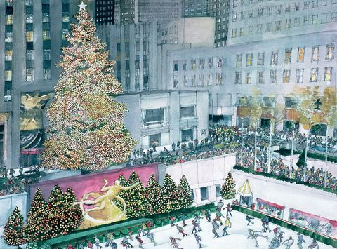 History of the Christmas Tree: A Tradition Dating Back to the Romans