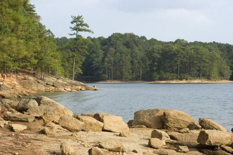 Rocky Shoreline of Lake Allatoona