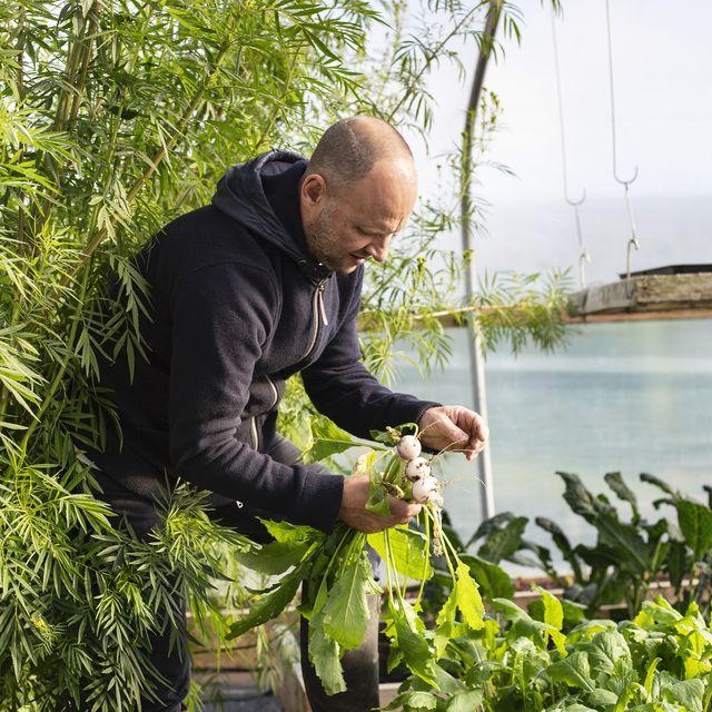 Simon Rogan gardening
