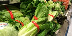 First Death Reported Related To E Coli Outbreak Sourced To Romaine Lettuce