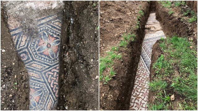color roman mosaic floor under italian vineyard