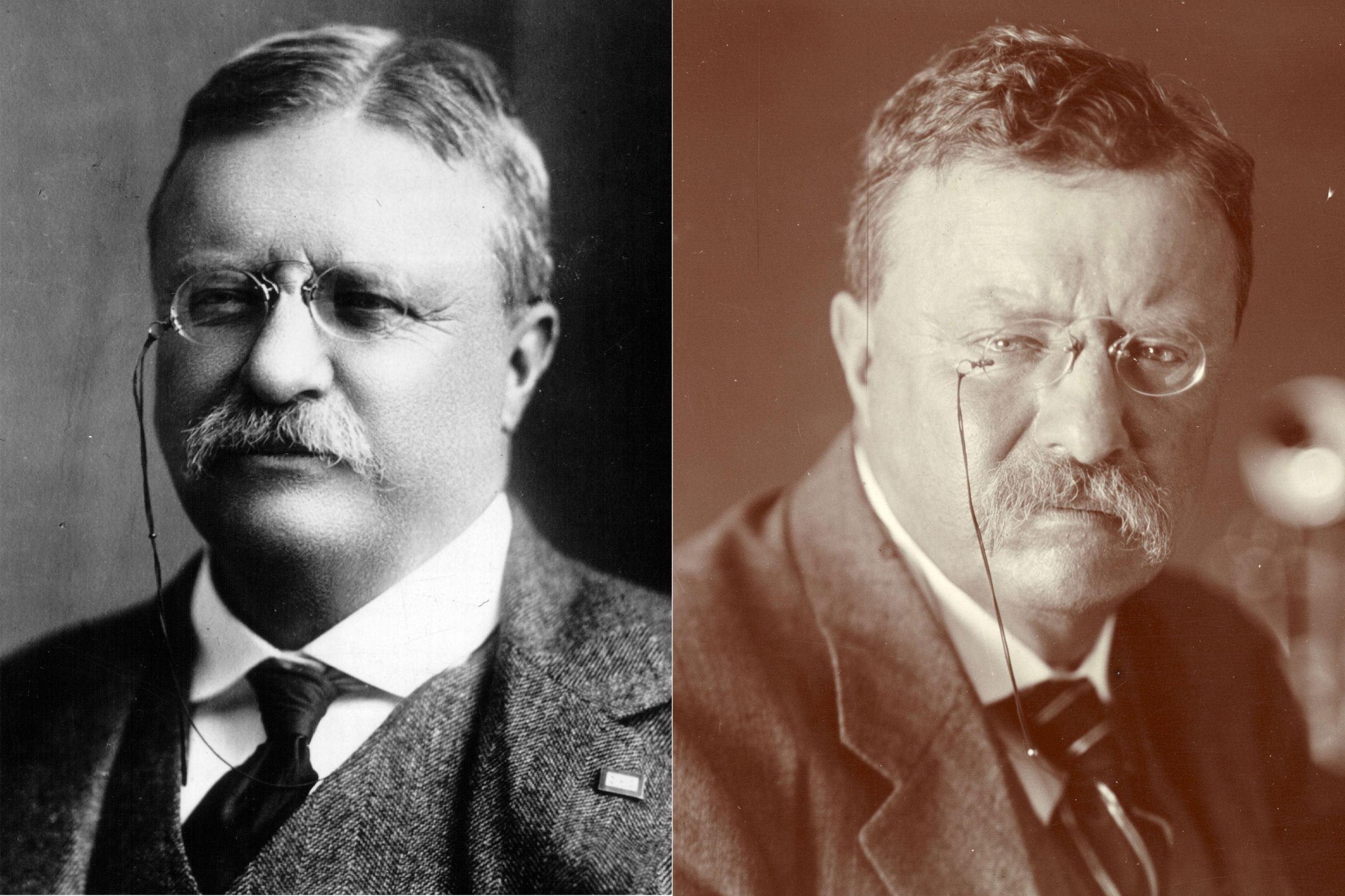 Theodore Roosevelt - Presidents Before And After Serving In Office