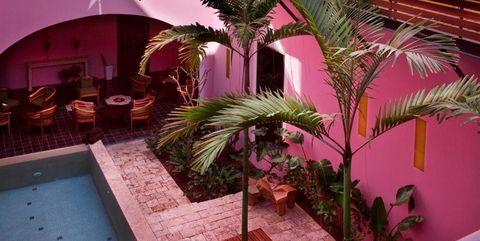 Rosas & Xocolate Boutique Hotel + Spa