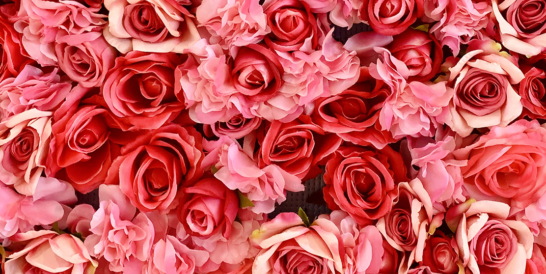 21 Special Rose Color Meanings Rose Flower Meanings For Valentine S Day