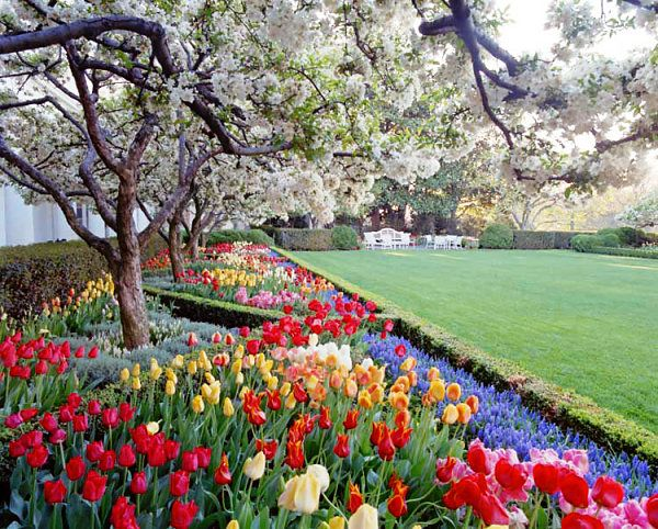 The History Of The White House Rose Garden Over The Last Century