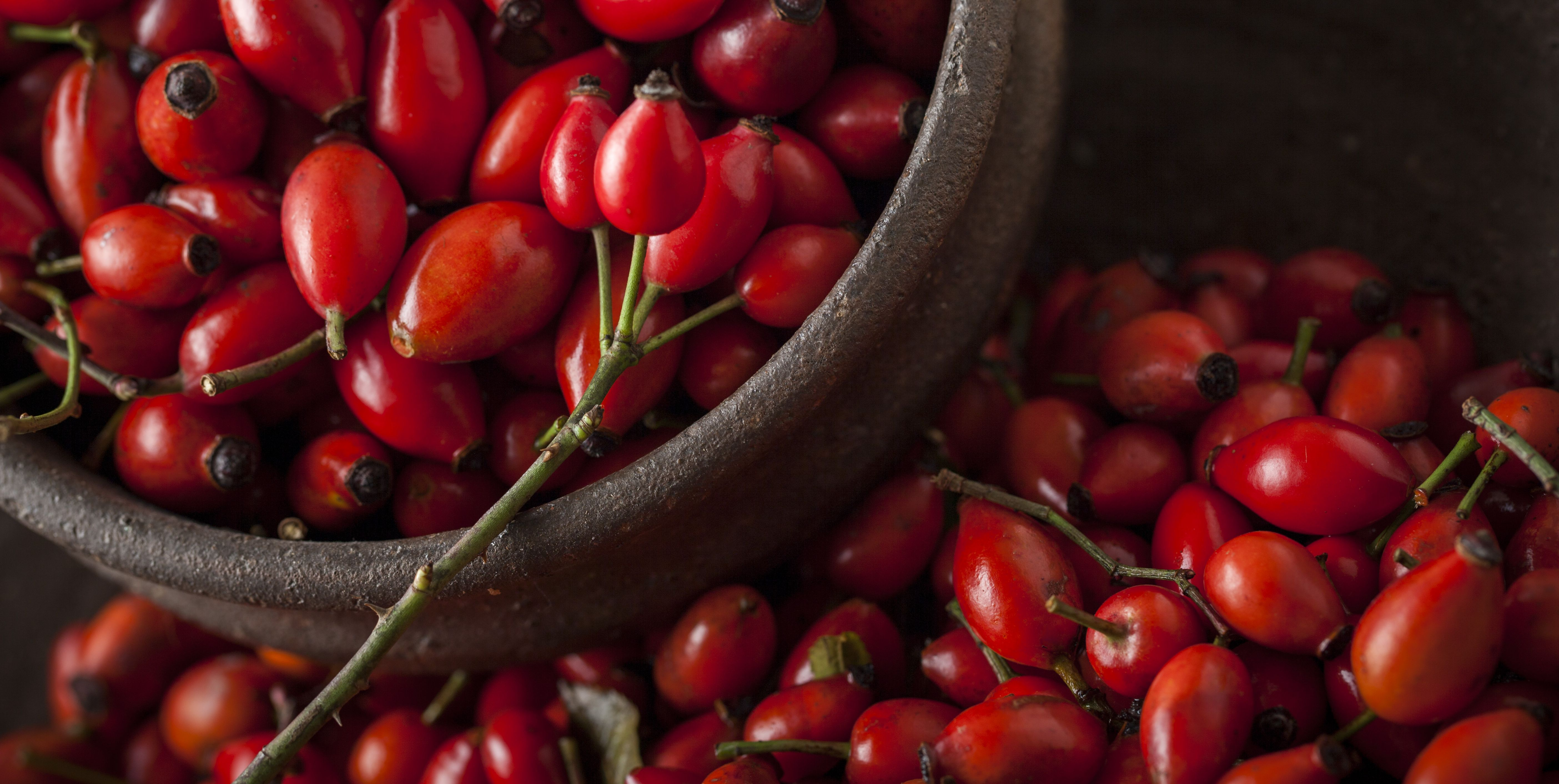 7 Amazing Benefits of Adding Rosehip Oil to Your Skincare Routine